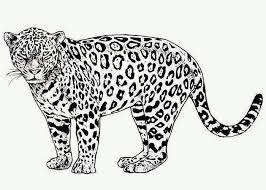 African Animal Template Animal Templates Free Premium Templates