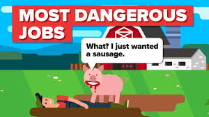 Most Dangerous Jobs Youtube