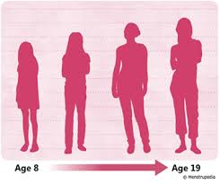 Physical Development 16 19 Years Chart Physical Changes That Occur During Puberty In Girls