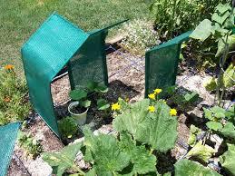 garden shade cloth. Shade Cloth Vegetable Garden Homemade For My Baking Sfg