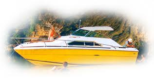 owners resources model archives owners manuals surpa5s 1990 Sea Ray Wiring Diagram model archives sea ray 1990 sea ray wiring diagram