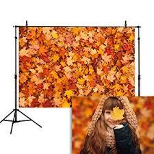 Allenjoy 5x7ft Autumn Leaves Photography Backdrop ... - Amazon.com