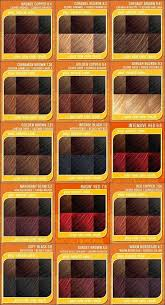 Argan Oil Hair Color Chart Originatedinfo Lamidieu