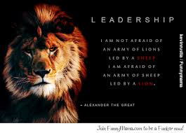 Funny Leadership Quotes Impressive SFI Forum Some Nice Leadership Quotes
