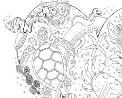 Coloring Page For Adult Forest Animal Pages Printable Beautiful