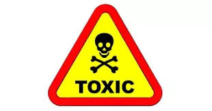 9 Toxic Coworkers To Look Out For And How To Protect Yourself