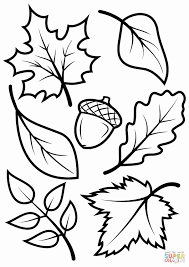Color Sheets For Fall Elegant Best Coloring Page Adult Od Kids