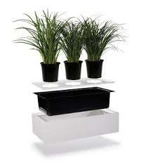 office planter boxes. strata 2 planter office boxes