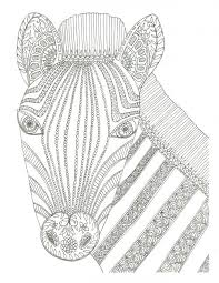 Small Picture 26 best Coloring Pages Horses Donkeys Zebras Unicorns images
