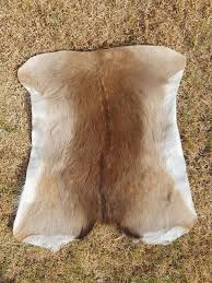tips deer skin rug uk