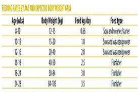 Pig Growth Chart 49 Valid Pig Feeding Chart