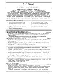 Project Manager Sample Resume Format Resume Template Ideas