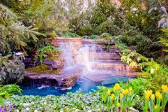 Resultado de imagem para Cachoeiras com jardins