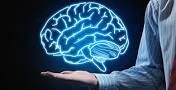 نتیجه تصویری برای مقاله درباره مغز و زندگی