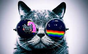 Hipster Galaxy Cat Wallpapers - Top ...