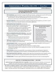 for your cio resume writing needs information system officer resume