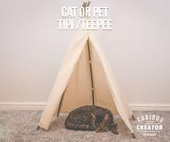 picture of cat tipi tee