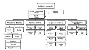 Ics Basic Organization Chart Ics 100 Level From Fema