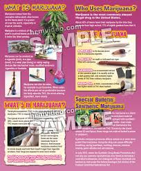 property pamphlet spotlight on marijuana pamphlets human relations media k 12