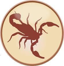 Resultado de imagem para os signos do zodiaco