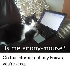 on the internet nobody knows you re a cat. Modren The Nobody Knows Youre A Cat  Internet Memes And Mouse Is Me  Anonymouse On The Internet For The Internet You Re G