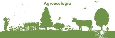 Resultado de imagen para agroecología