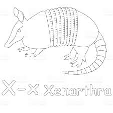 Small Picture Letter X For Xenarthra Coloring Page stock photo 486998765 iStock