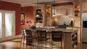 Kitchen Cabinets Remodel Gorgeous Kitchen Remodel Kitchen Renovation Design
