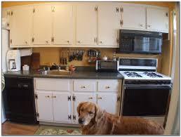 Kitchen Cabinets In Michigan Kitchen Cabinets Painted White Dove Cliff Kitchen Design Porter