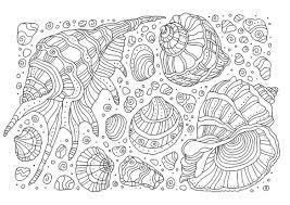 大人の塗り絵貝殻無料印刷 もくもくん知育プリントキッズ