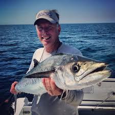 Kingfishing In Tampa Bay - Old Salt <b>Fishing</b> Foundation