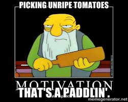 Picking unripe tomatoes That's a paddlin'. - Thats a paddlin ... via Relatably.com