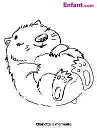Marmotte 2 Animaux Coloriages Imprimer