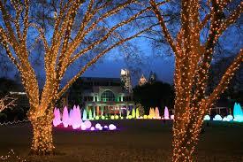C Lighting Buckhead Ga Atlanta Botanical Gardens Garden Lights Holiday Nights