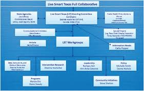 Smart Communications Organizational Chart 8 Live Smart Texas Panel Presentation Childhood Obesity