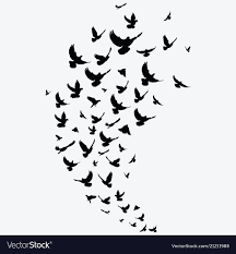 flock of birds silhouette. Plain Flock With Flock Of Birds Silhouette