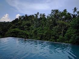 infinity pool bali. Beautiful Pool Jungle_Fish_Bali_07jpg In Infinity Pool Bali