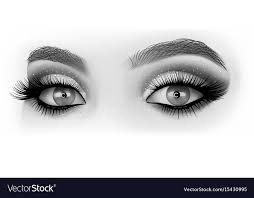 black and white eyes makeup vector image