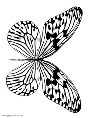 Here's another beautiful butterfly coloring pages for kids. Butterfly Coloring Pages Free Printable Pictures For Kids