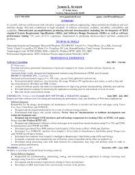Chef Resume Example Professional Chef Resume Example 10 Good