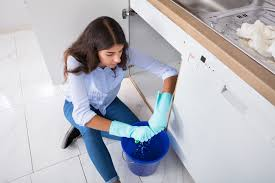 How To Get Rid Of An Old Musty Smell In Kitchen Cabinets Home