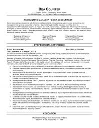 Accountant Resume Examples Resume Work Template