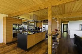 Top Mid Century Modern Kitchen  Wonderful Kitchen Ideas - Mid century modern kitchens