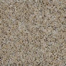 home decorators collection carpet sample madison i color