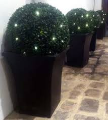 Artificial Solar Box Ball TopiaryTree With 30 LED Lights For SaleArtificial Topiary Trees With Solar Lights