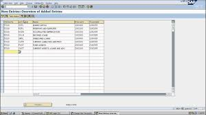 Sap Fi Chart Of Accounts Lesson 3