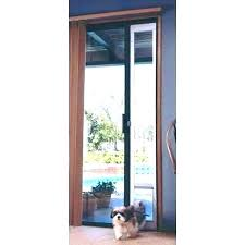 dog door in french cat for pet with insert