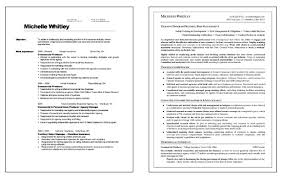 Trainer Resume Format - Kleo.beachfix.co