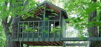 Tree House Plans Building Pdf Book Designs Between 2 Trees