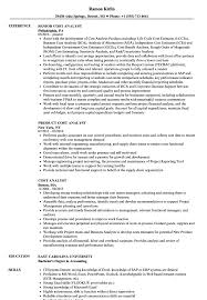 Web Analyst Resume Sample Cost Analyst Resume Samples Velvet Jobs 22